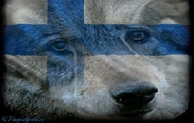 Wolf Suomi